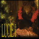 Medvídek/Lucie