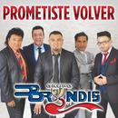 Prometiste Volver/Grupo Bryndis