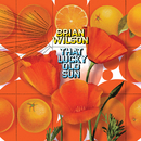 That Lucky Old Sun/Brian Wilson