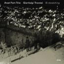 Birdwatching/Anat Fort Trio, Gianluigi Trovesi