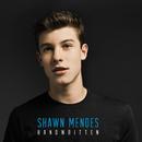 Handwritten/Shawn Mendes