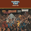 I Want You/Marvin Gaye