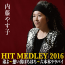 内藤やす子ヒットメドレー2016 (弟よ~想い出ぼろぼろ~六本木ララバイ)/内藤やす子