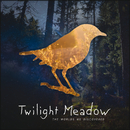 The Worlds We Discovered/Twilight Meadow