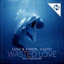 Wasted Love (feat. Robbie Rosen)/Lush & Simon, Gazzo
