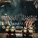 Nobody Knows (feat. Tellaman)/Lastee
