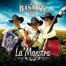 La Maestra/Los Bañales Juniors