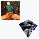 Are You Serious (Deluxe Edition)/Andrew Bird