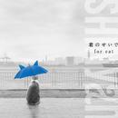 君のせいで for cat/SHINyan