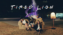 Not My Friends/Tired Lion