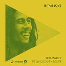 Is This Love (Remix) (feat. LVNDSCAPE, Bolier)/Bob Marley, The Wailers