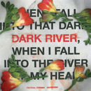 Dark River (Festival Version)/Sebastian Ingrosso