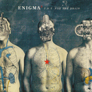 T.N.T. For The Brain/Enigma