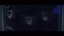 Apor i djungeln/Labyrint