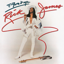 Fire It Up/Rick James