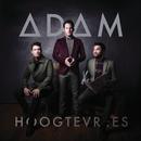 Hoogtevrees/ADAM