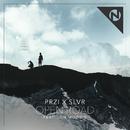 Open Road (PRZI X SLVR) (feat. Jon Moodie)/PRZI, SLVR