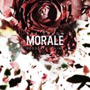Desolate Divine/The Color Morale