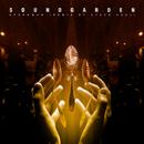 Spoonman (Remix By Steve Aoki)/Soundgarden