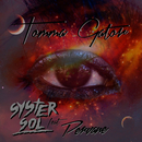 Tomma gator (feat. Pervane)/Syster Sol