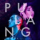 Pulang (feat. SonaOne)/Yuna