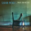 Treat You Better (Ashworth Remix)/Shawn Mendes