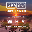 Why (Chimney Records Mix) (feat. Summer Rayne, Beenie Man)/Skylife
