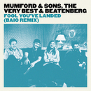 Fool You've Landed (Baio Remix)/Mumford & Sons, The Very Best, Beatenberg