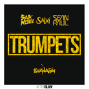 Trumpets (feat. Sean Paul)/Sak Noel, Salvi
