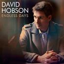 Endless Days/David Hobson