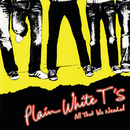 All That We Needed/Plain White T's