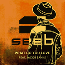 What Do You Love (feat. Jacob Banks)/Seeb