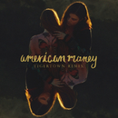 American Money (Tigertown Remix)/BØRNS