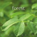 Forest/Glenn Heaton, Geoff McGarvey