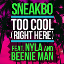 Too Cool (Right Here) (feat. Nyla, Beenie Man)/Sneakbo