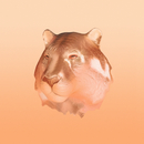 Copper Kiss (Remixes)/Sälen