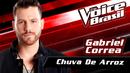 Chuva De Arroz (The Voice Brasil 2016 / Audio)/Gabriel Correa