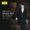 Schubert: The Clarinet Album/Wang Tao, Michel Kiener