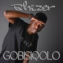 Gobisiqolo/Bhizer