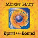 Spirit Into Sound/Mickey Hart