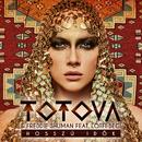 Hosszú Idők (feat. Begi Lotfi)/Totova & Freddie Shuman