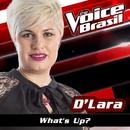 What's Up (The Voice Brasil 2016)/D'Lara