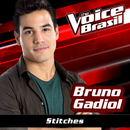 Stitches (The Voice Brasil 2016)/Bruno Gadiol