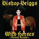 Wild Horses (Attom Remix)/Bishop Briggs