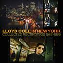 Man On The Verge/Lloyd Cole