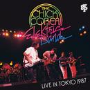 ライヴ・イン・東京 1987/Chick Corea Elektric Band