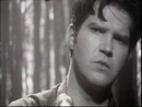 Morning Is Broken (Stereo)/Lloyd Cole
