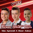 Não Aprendi A Dizer Adeus (Ao Vivo / The Voice Brasil Kids 2017)/Gui Marques, João Pedro Locatelli, Marco Souzza