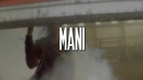 You Thought (feat. Phresh Ali, Miss Mulatto, Deetranada)/Mani
