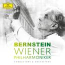 Leonard Bernstein & Wiener Philharmoniker/Wiener Philharmoniker, Leonard Bernstein